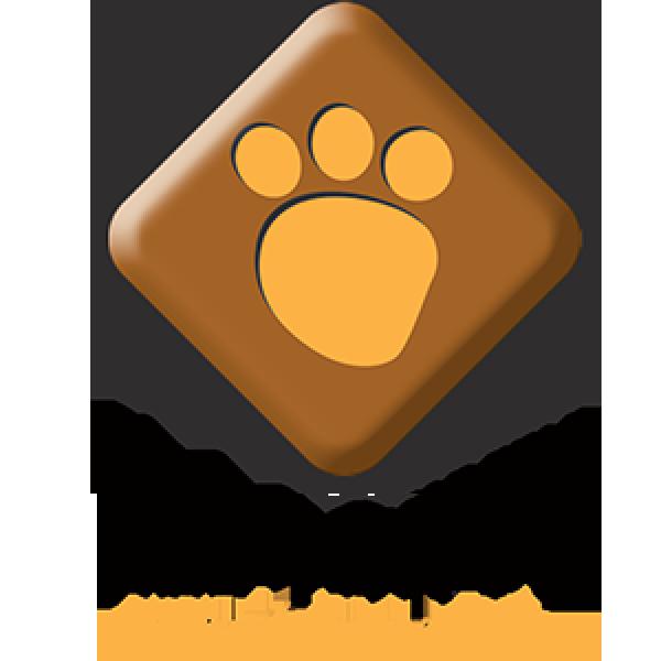 Plush & Company